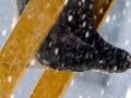 Niet de lage temperatuur, maar vooral neerslag en condensvorming zijn de grootste spelbrekers als het gaat om uitvoeren van schilderwerk. Speel daar op in.