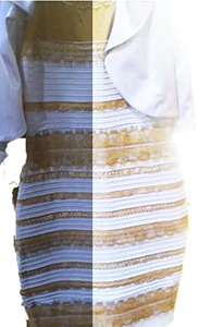 De blauwe jurk