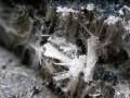 asbest van dichtbij