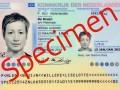 nieuw paspoort